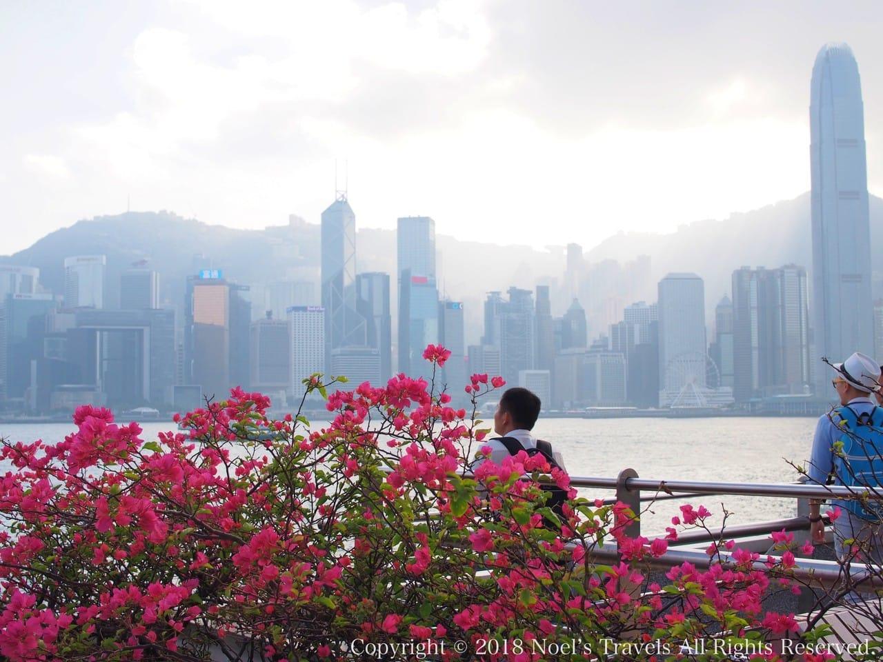 チムサーチョイ・プロムナードと香港の高層ビル群