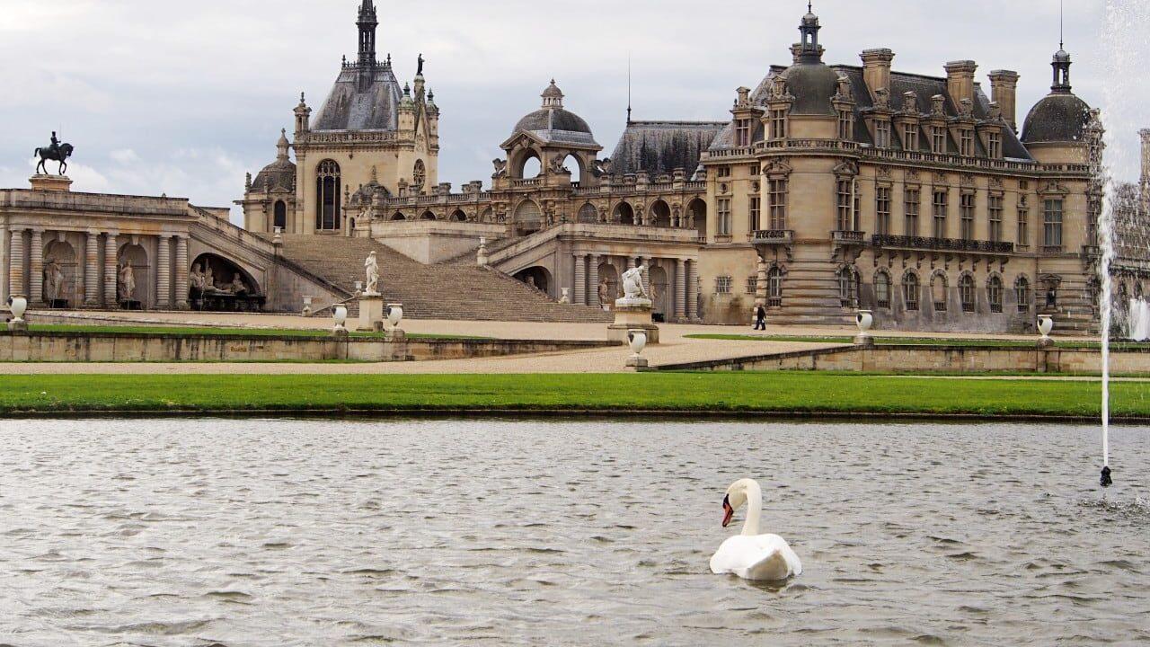 シャンティイ城と庭園の白鳥