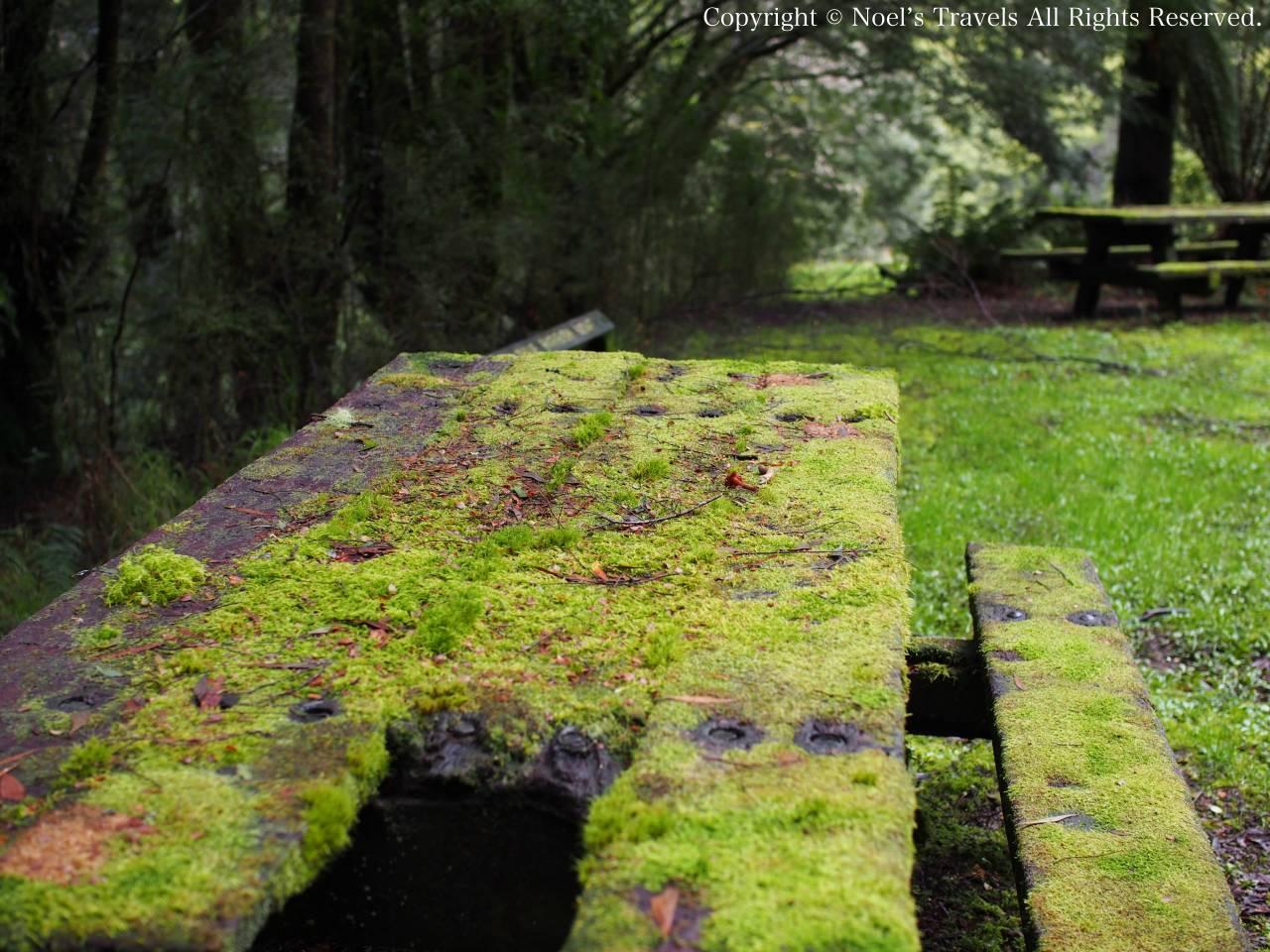 グレートオトウェイ国立公園